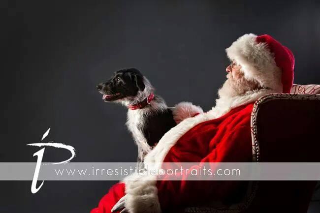 Mia - Santa 2014 - sleigh