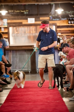 Bark and Brew-8067 - small