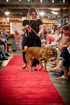 Bark and Brew-8116 - small