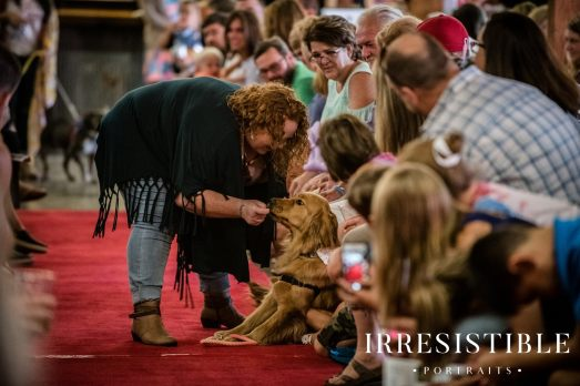 bark-and-brew-2018-red-carpet10