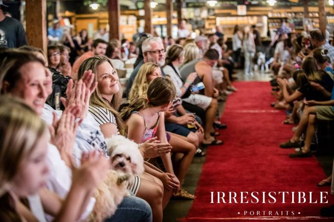 bark-and-brew-2018-red-carpet22
